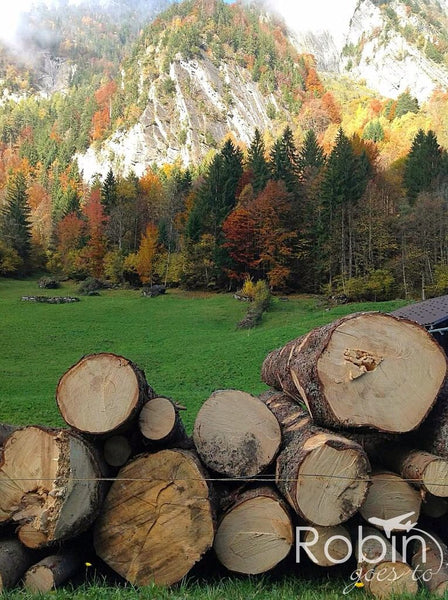 Fall hike through the Grindelwald Valley, Switzerland