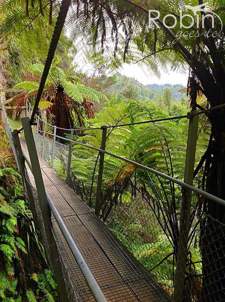 Suspension bridge, Whanganui River Valley, New Zealand