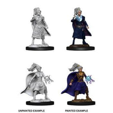 Load image into Gallery viewer, D&D Nolzur's Marvelous Unpainted Miniatures: Female Human Sorcerer ( 2 stk)