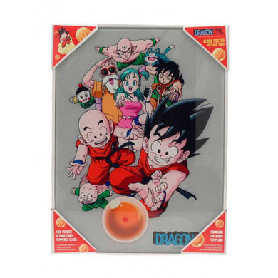 Dragon Ball Z Glas Plakat - Characters 30x40cm
