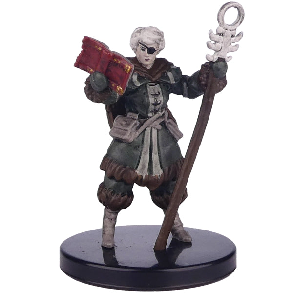 Dungeons And Dragons - Miniatures - Vellynne Harpell ( Icewind Dale: Rime of the Frostmaiden)
