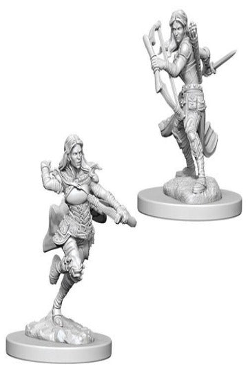 D&D Nolzur's Marvelous Unpainted Miniatures: Air Genasi Female Rogue (2 stk)
