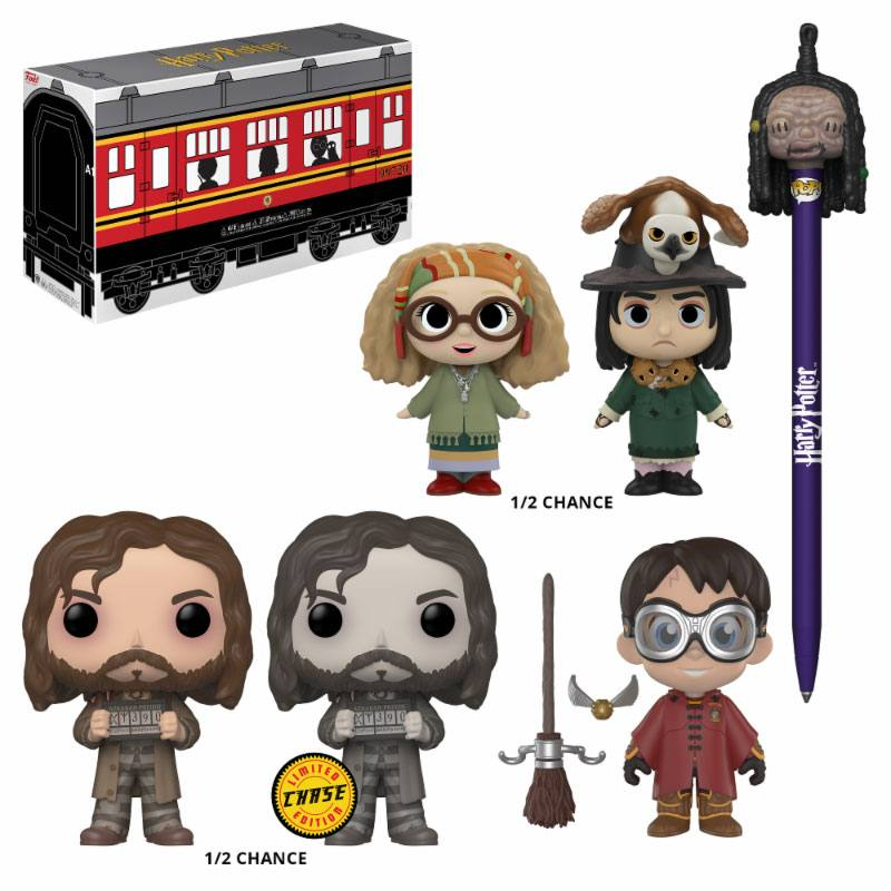Harry Potter - POP! Collector Mystery Hogwarts Limited Edition