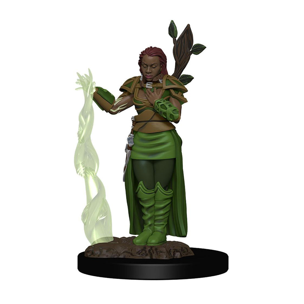 D&D Icons of the Realms Premium Miniature pre-painted Human Female Druid  (1 stk - Malet)