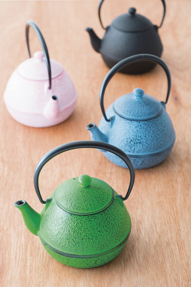 Beautiful Japanese Cast Iron Teapot