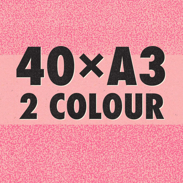 2-Colour A3 Risograph Bundle
