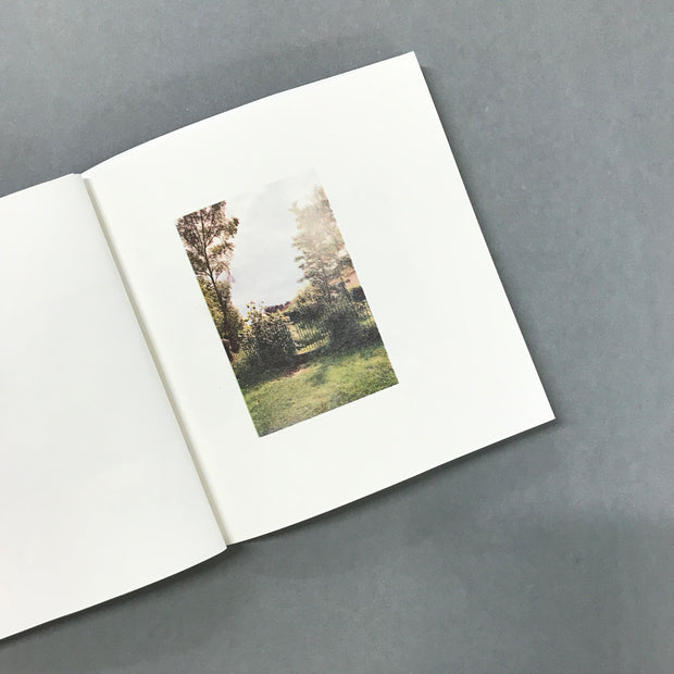 fieldnotes by Clare Lyons