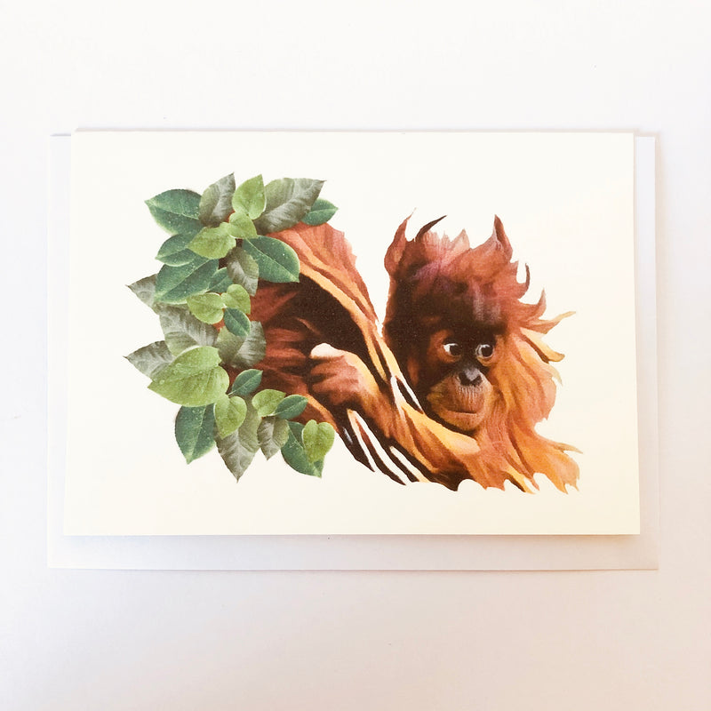 Baby Orangutan Blank Greeting Card