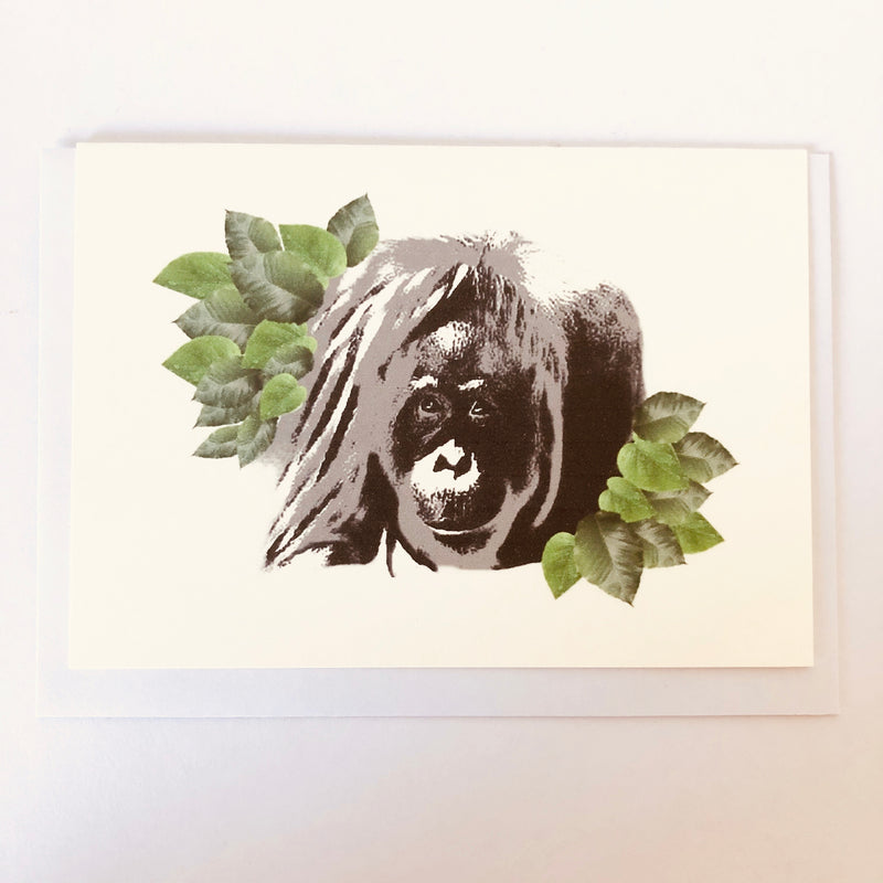 Adult Orangutan Blank Greeting Card