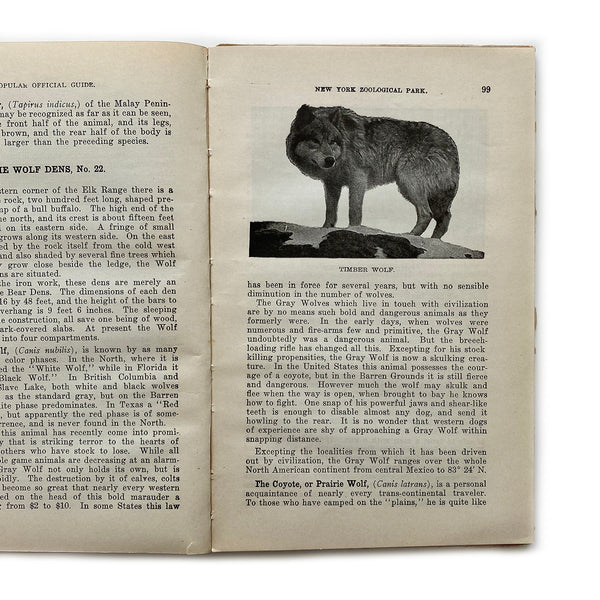 Vintage Book - Popular Official Guide to the New York Zoological Park