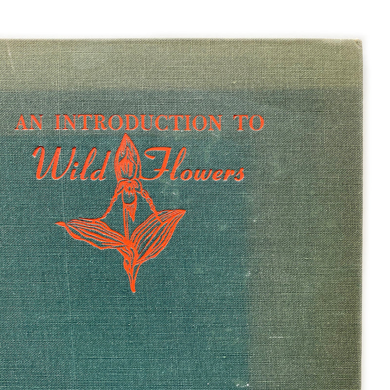 Vintage Book - An Introduction to Wild Flowers, J. Kieran