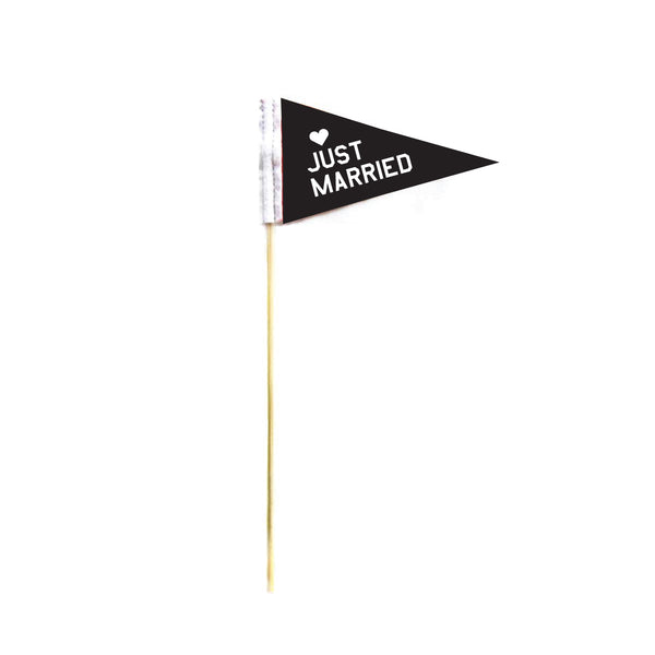 """JUST MARRIED MICRO MINI PENNANT"
