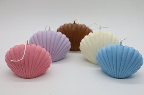 Clam Shell Soy Candle