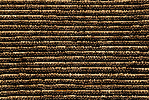 Saddle Brown Gabbeh 4' 6 x 6' 8 - No. 55715 - ALRUG Rug Store