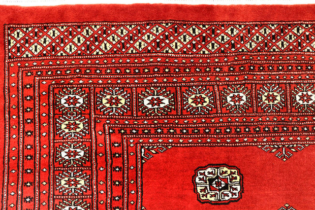 Orange Red Bokhara 10' 2 x 14' 10 - No. 59616 - ALRUG Rug Store