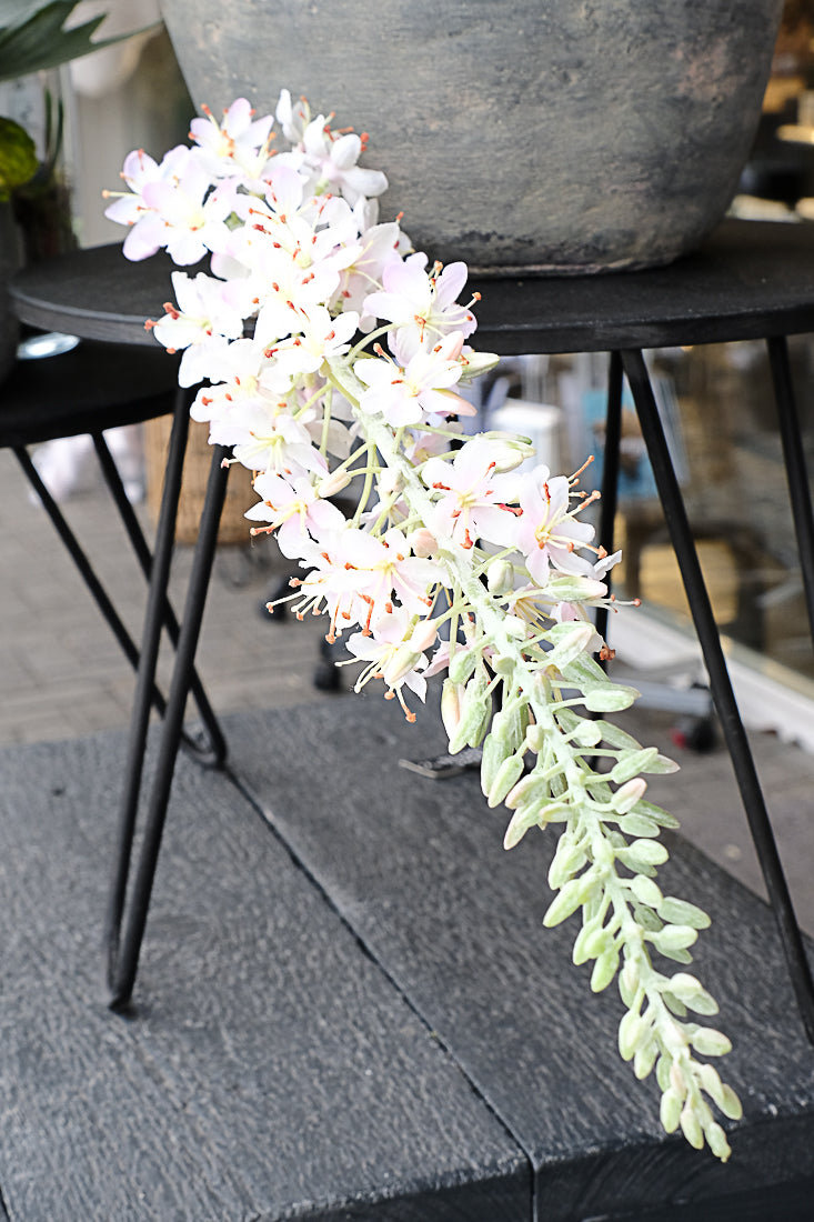 Eremurus steel Roze - Valeur home Decoration