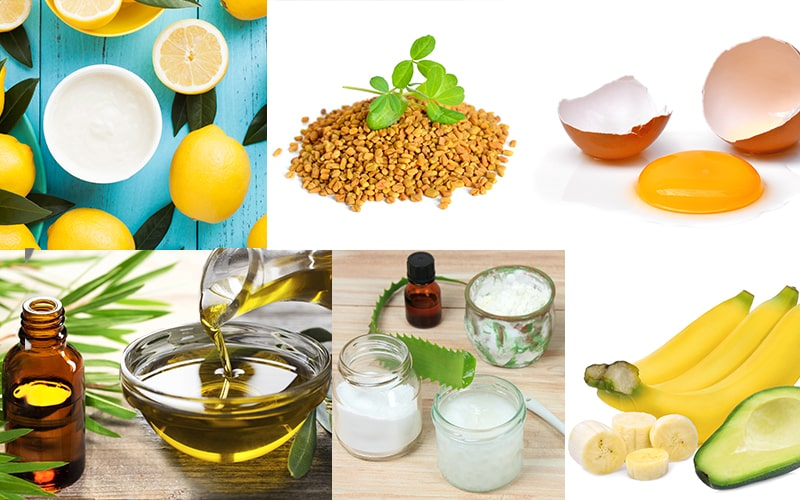 5 Best DIY Masks For Itchy Scalp