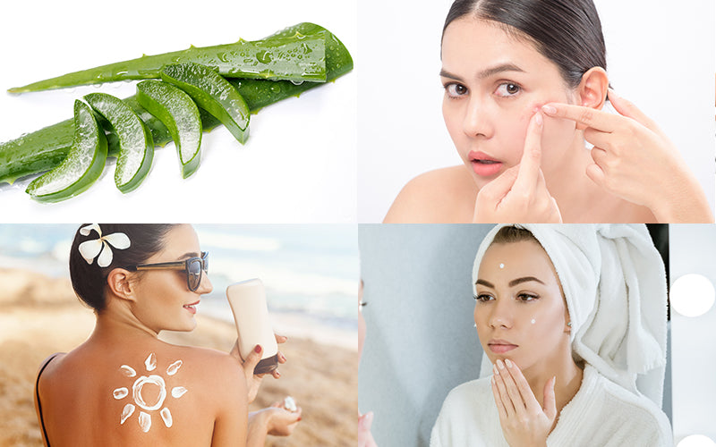 Everything You Need To Know About Skin Pigmentation
