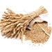 Hydrolysed Wheat Proteins