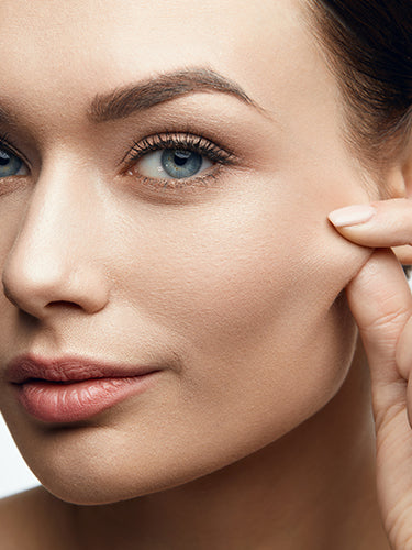 The Difference Between Collagen and Elastin