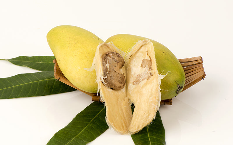 What is mango seed butter?