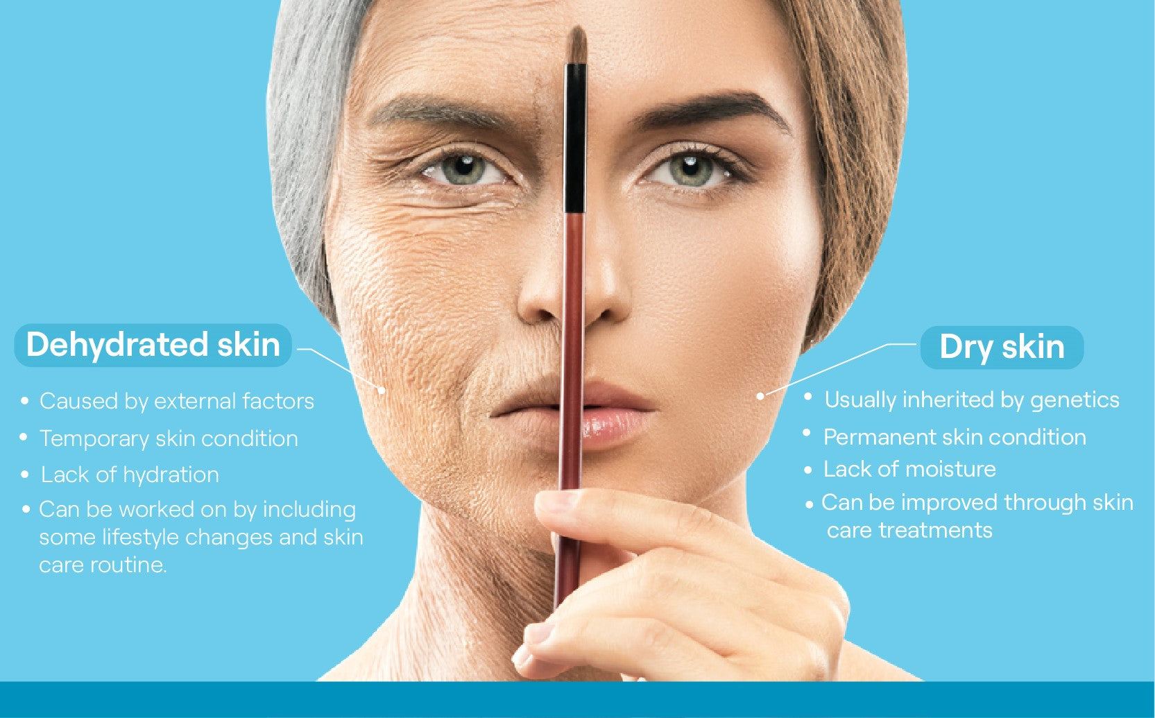 difference between dehydrated and dry skin