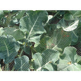 Bird & Butterfly Garden Netting