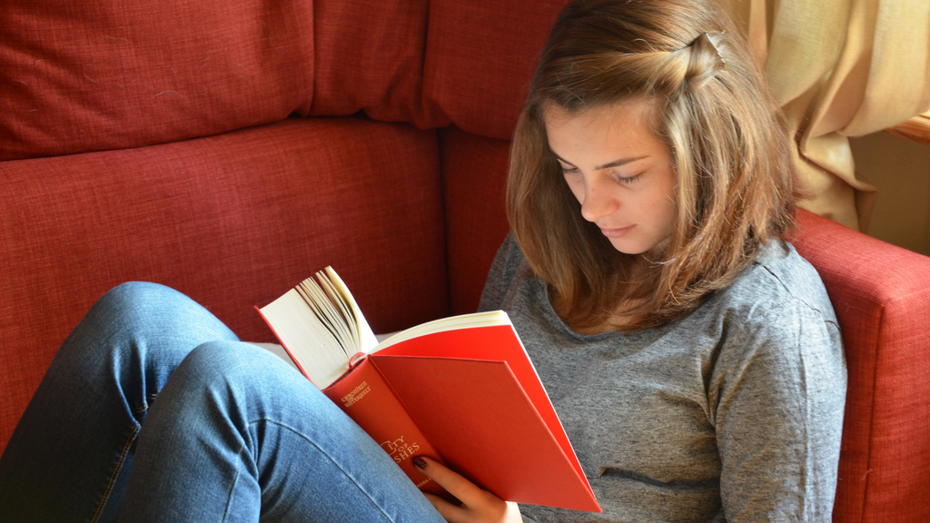 A teenage girl in jeans and a gray sweater sits on a red sofa while reading a book with a red cover.