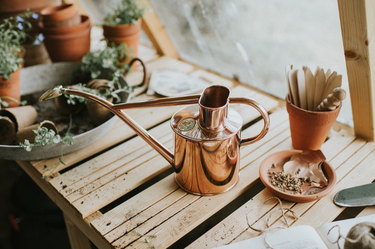 Haws Watering Cans 1L - Copper on potting bench