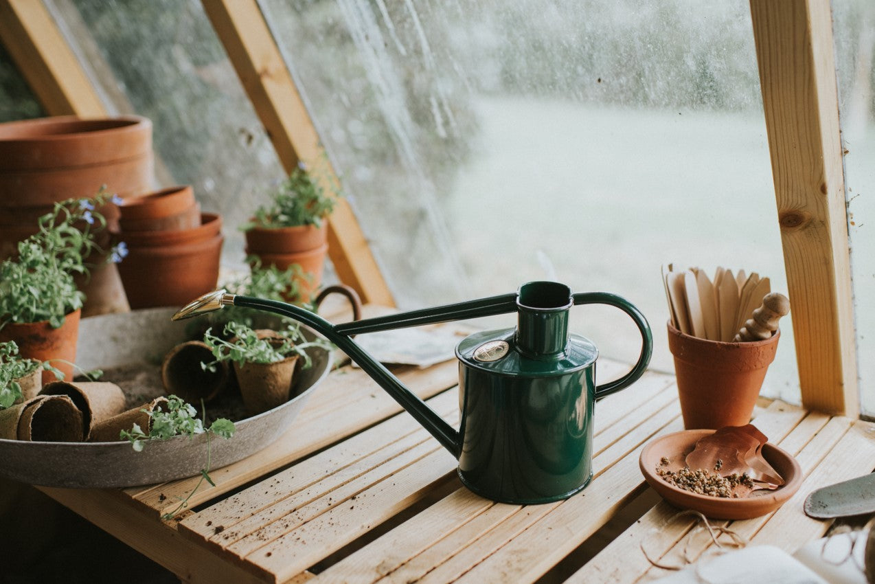 Haws Watering Can 1L - Green on potting bench