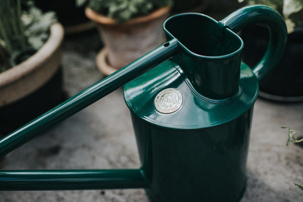 Haws Watering Can 1L - Green on slate bench