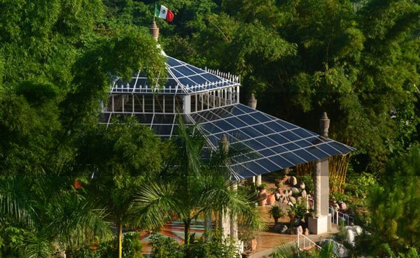 A Tropical Wonderland: Puerto Vallarta Botanical Gardens