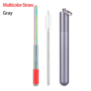 Stainless Steel Travel Straw Set