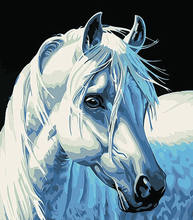 Load image into Gallery viewer, A White Horse