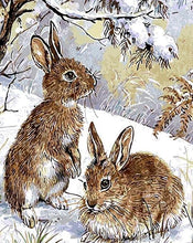 Load image into Gallery viewer, Two Rabbits