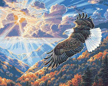Load image into Gallery viewer, An Eagle In The Sky Kit