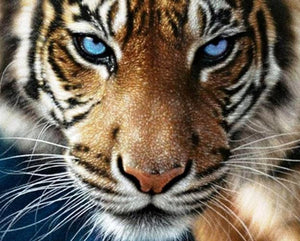 Blue Eye Tiger painting