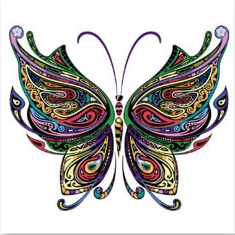 Colorful Butterfly - Paint by Numbers