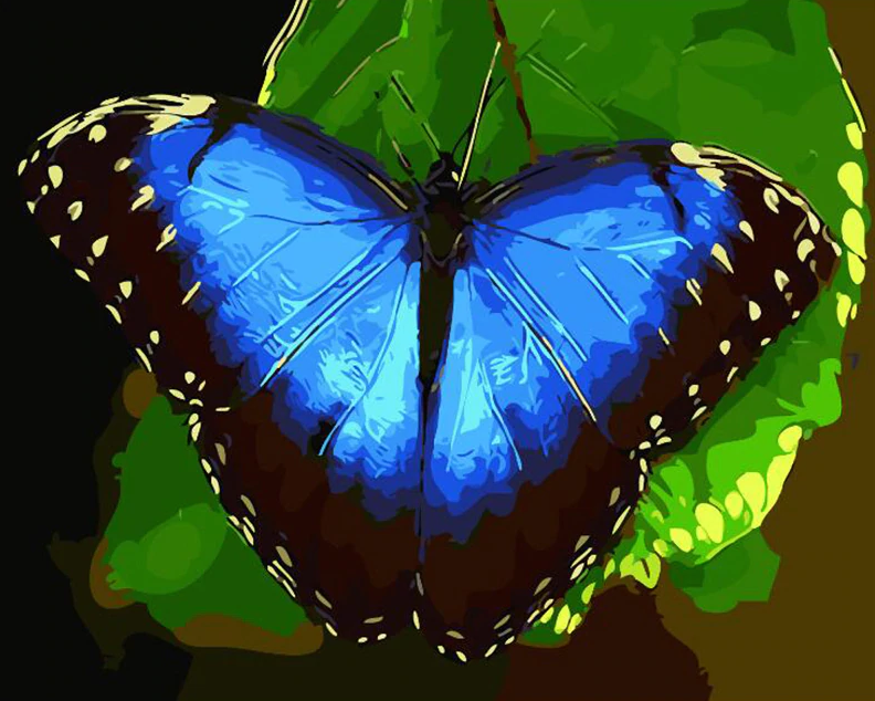 Beautiful Butterfly Painting Kit