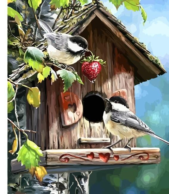 Birds DIY paint by numbers kit