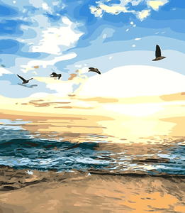 Birds And Sunset On Ocean