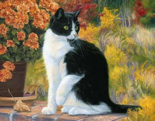 Load image into Gallery viewer, Black And White Cat painting