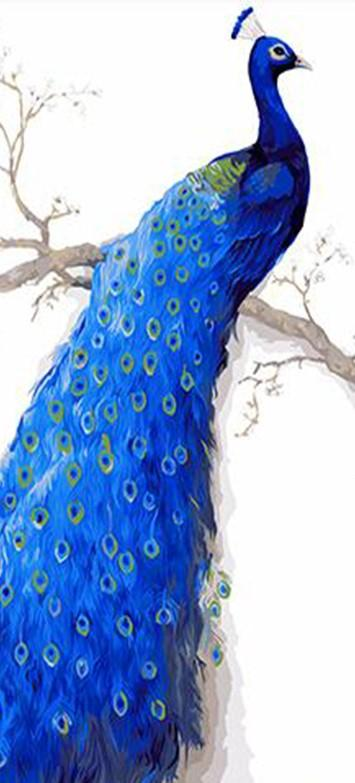 Beautiful Peacock painting