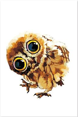 Cute Little Owl Painting Kit