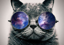 Load image into Gallery viewer, Cat with Glasses Painting kit