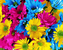 Load image into Gallery viewer, Colorful Flowers Kit