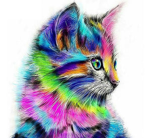 Colourful Cat Painting By Number