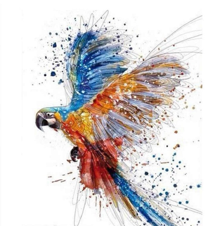 multi colour Parrot