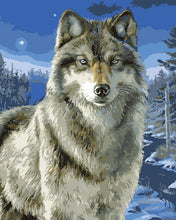 Load image into Gallery viewer, Wolf painting kit