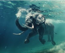 Load image into Gallery viewer, Under Water Elephant